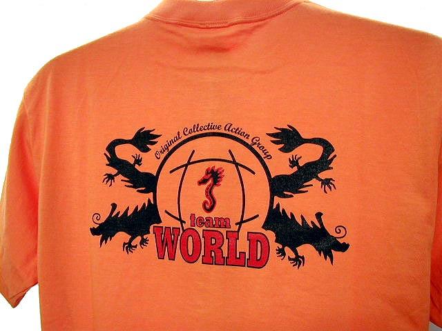 チームTシャツ・ウェア お客様の写真と声 : TEAM WORLD 様