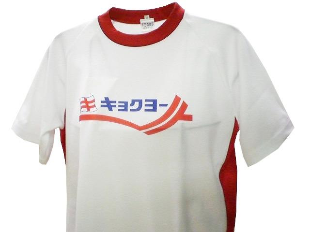 チームTシャツ・ウェア お客様の写真と声 : 極洋(キョクヨー) 様
