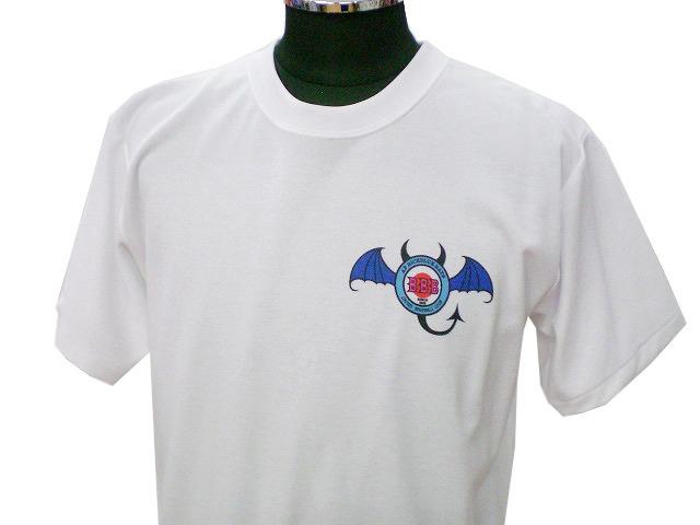 チームTシャツ・ウェア お客様の写真と声 : AFB-BATS 様(女子硬式野球)