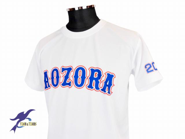 チームTシャツ・ウェア お客様の写真と声 : 青空会[駒沢大学野球サークル]様 (昇華Tシャツ)